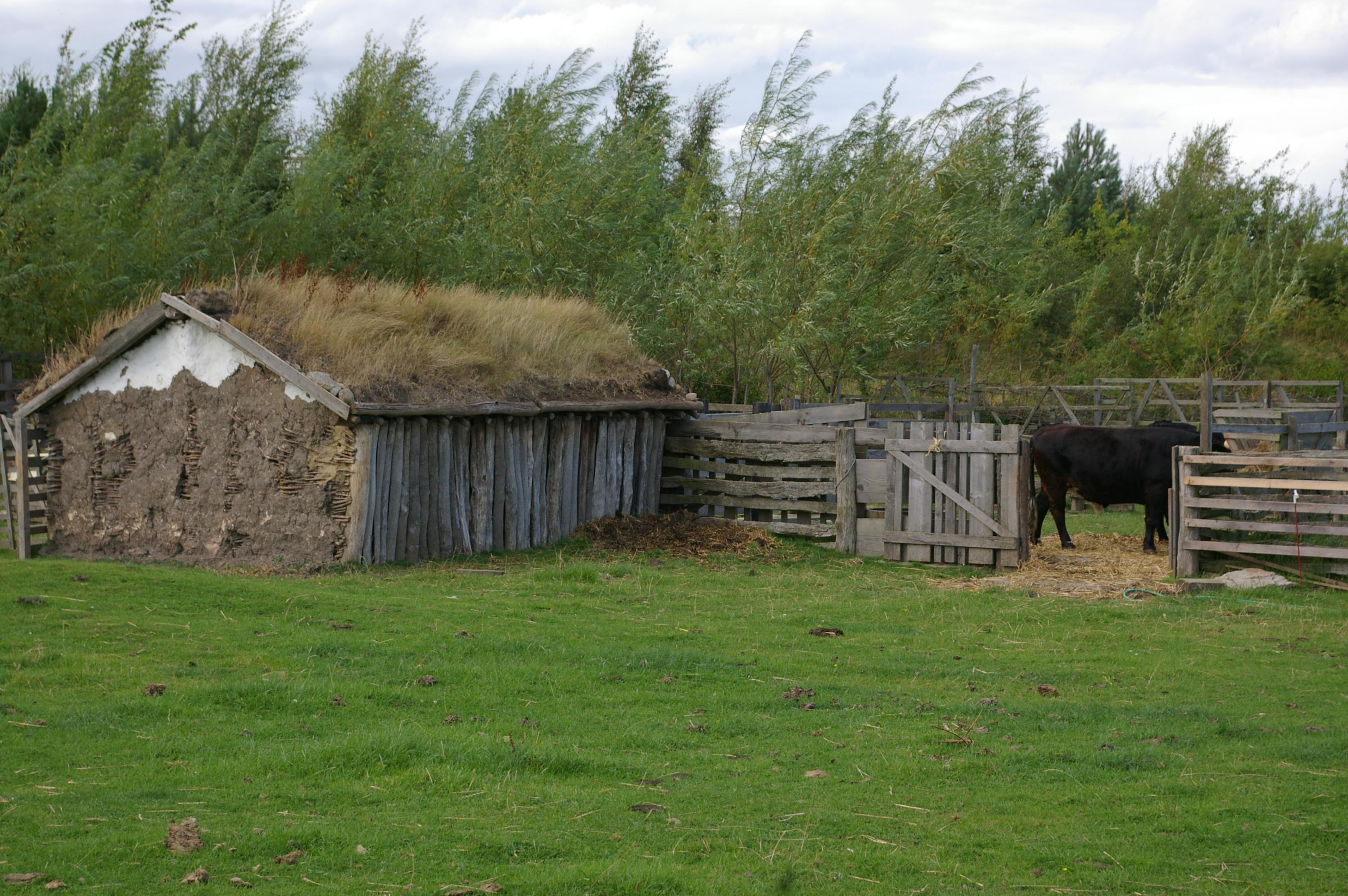 Bede S World Jarrow Northumberland